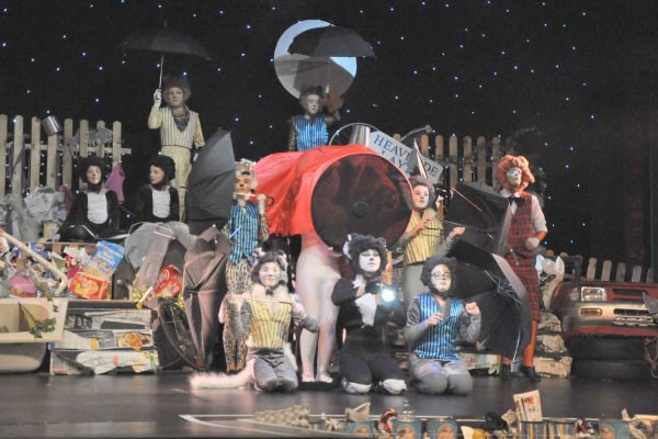 CATs and the Frome Memorial Theatre 2017