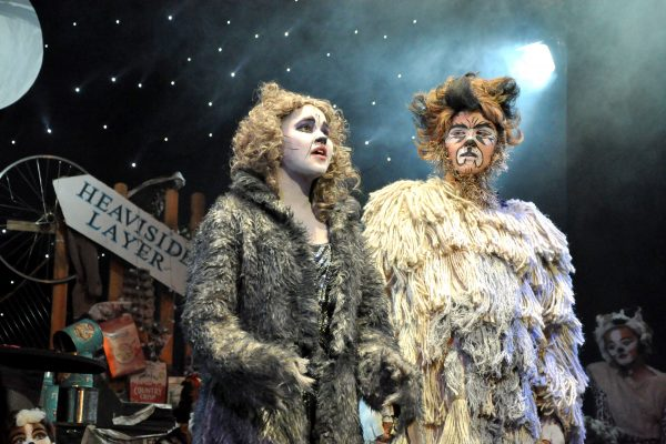 Frome Musical Theatre Company production of CATs