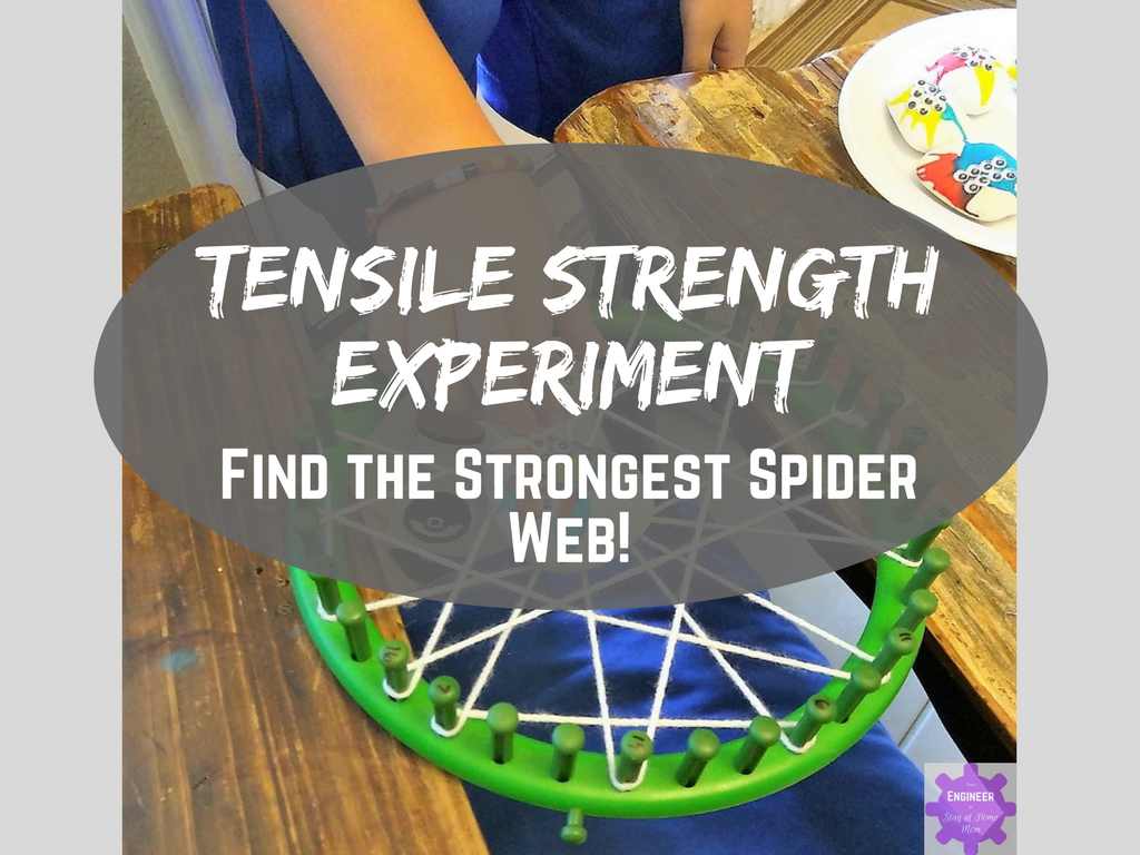 Tensile Strength Experiment: Find the Strongest Spider Web!