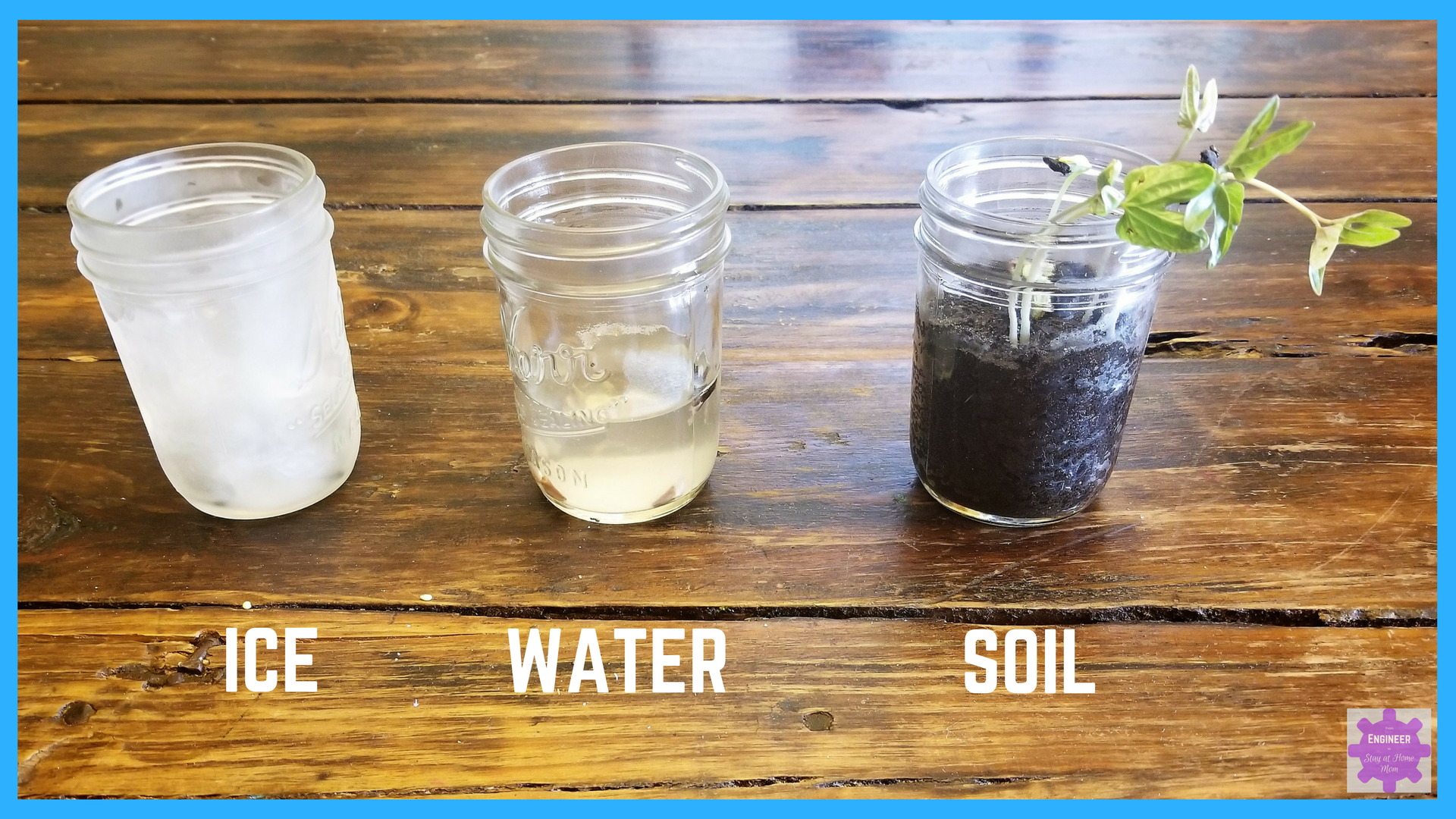 Seeds are planted in jars of ice, water, and soil.