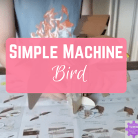 Simple Machine Bird: Levers, Gears, and Birds! Oh My!