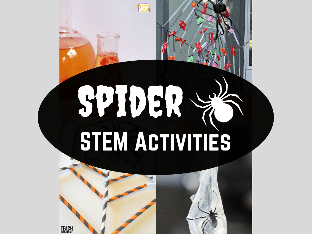 16 Spider STEM Activities and Science Experiments