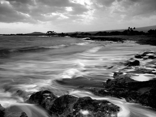 Hawaiian beach in black and white
