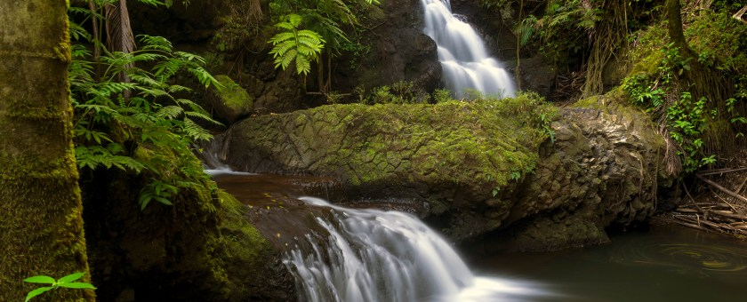 A long exposure of the Onomea falls