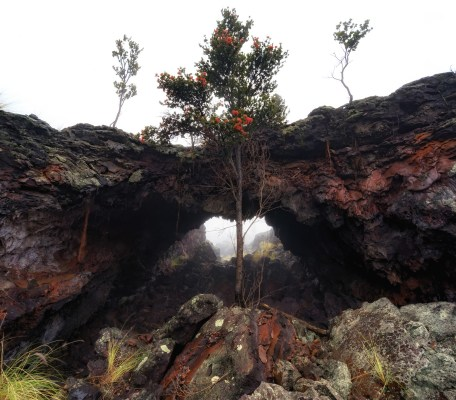 An land arch on the Big Island of Hawaii during a foggy day