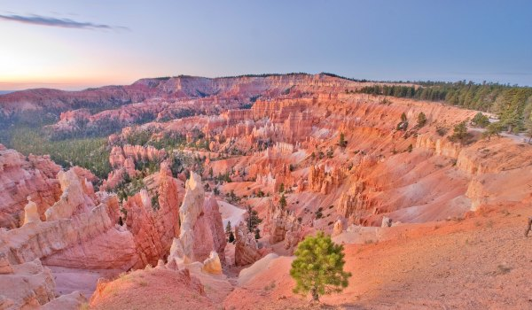 Experience Bryce Canyon National Park