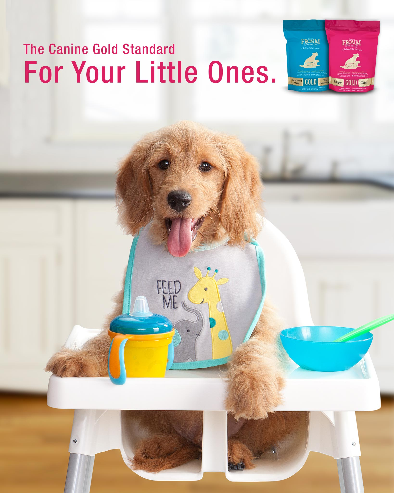 dog high chair comfortable reading small space puppy gold food fromm family foods