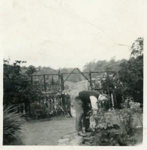 Werner Gardening