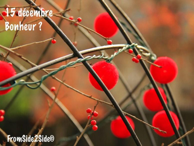 bonheur15