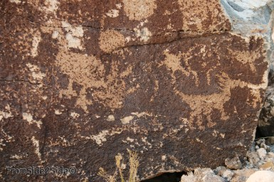 Petroglyph National Monument 3