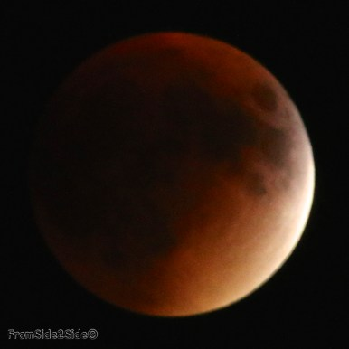 eclipse lune 2015 40