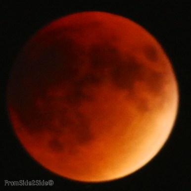 eclipse lune 2015 43