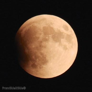 eclipse lune 2015 5