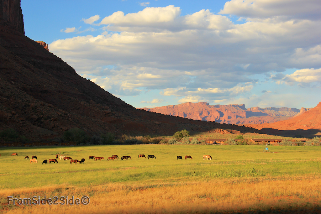 colorado_moab_ranch 24