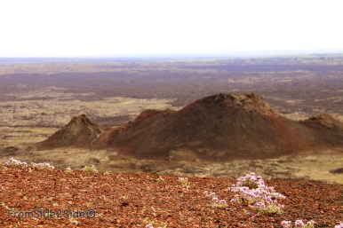 craters of the moon 27