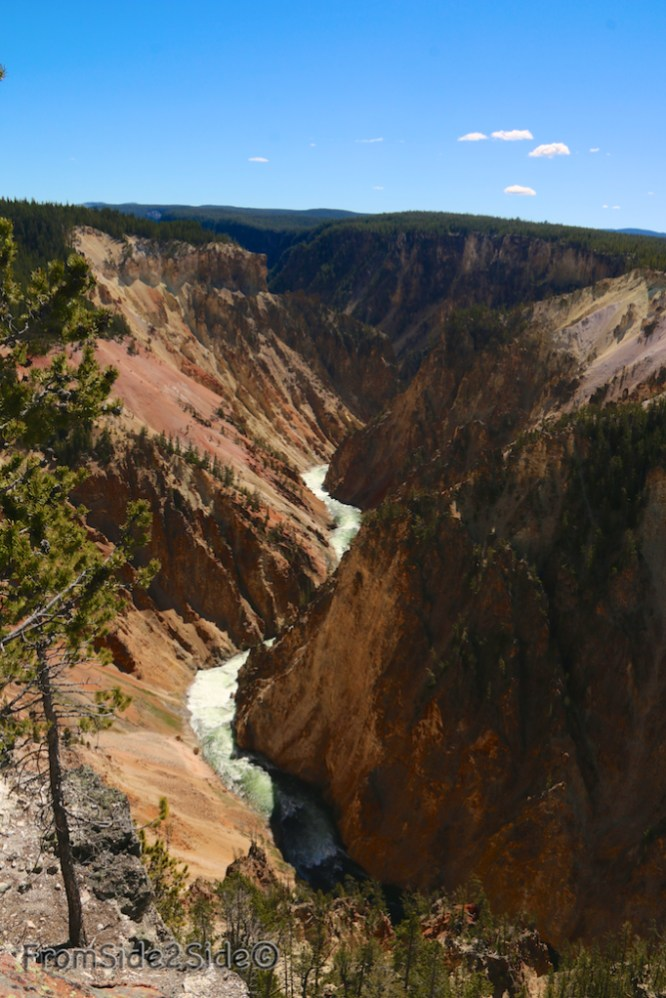 Grand Canyon Yellowstone 4