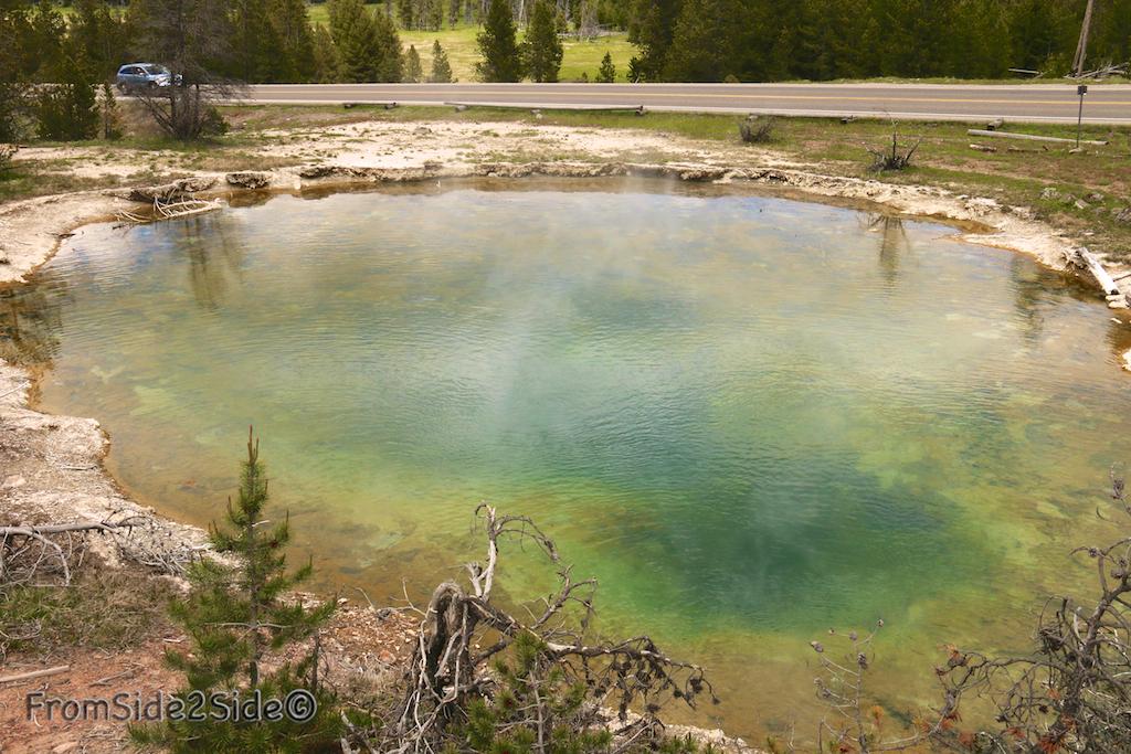 leather pool Yellowstone