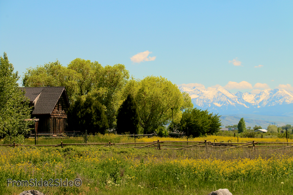 route du Montana 5
