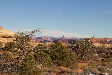 Canyonlands-Needles 21