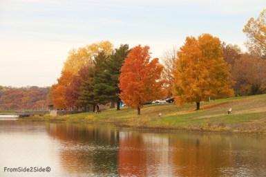 automne 3 (1)