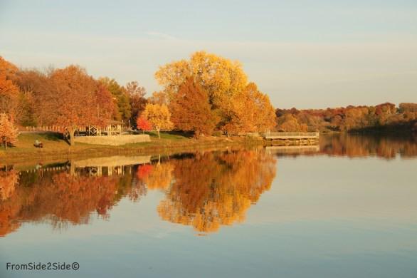 automne 6 (1)