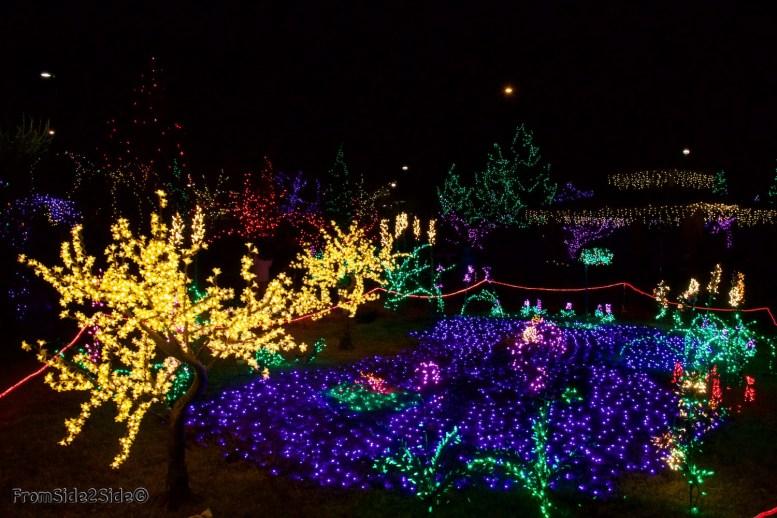 Fort Collins Noël 19