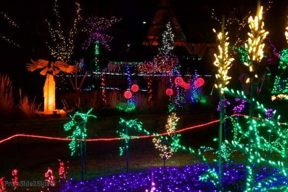 Fort Collins Noël 24