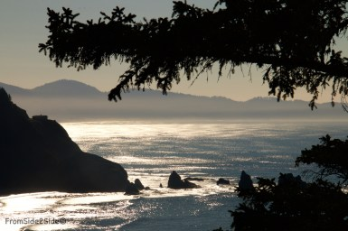 Oregon-coast 11