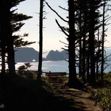 Oregon-coast 14