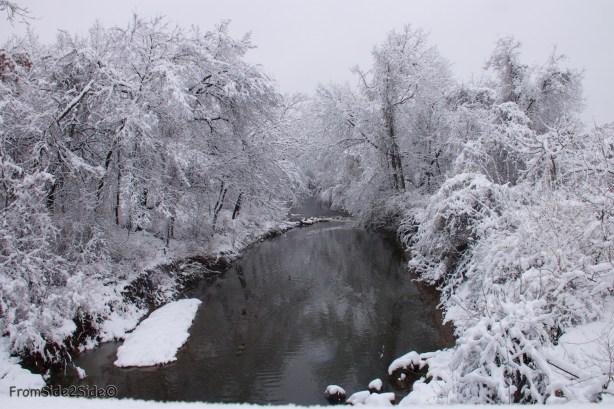 neige-jan-19 4