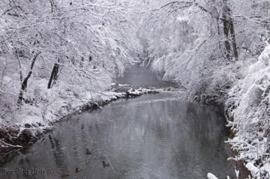 neige-jan-19 8
