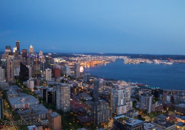 Seattle-Space-Needle 33