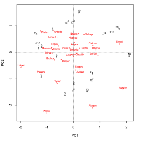 PCA biplot of the Dutch dune meadow data produced using ordipointlabel()