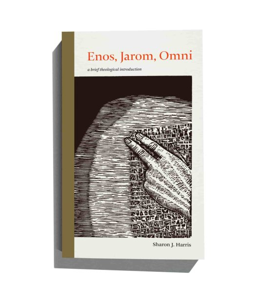 """The book cover of """"Enos, Jamon, Omni: A Brief Theological Introduction"""""""