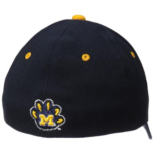 Michigan Wolverines Cap Leonardo DiCaprio in Before the Flood (2016)