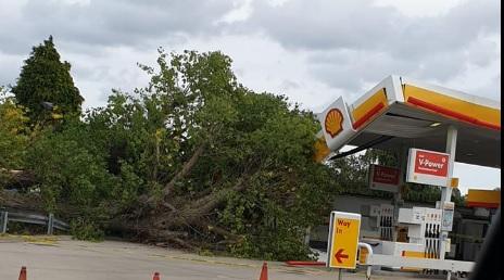 Shell-shocked: tree falls onto petrol station roof