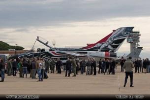 tornado-special-color-reparto-sperimentale-volo-aeronautica-militare-7