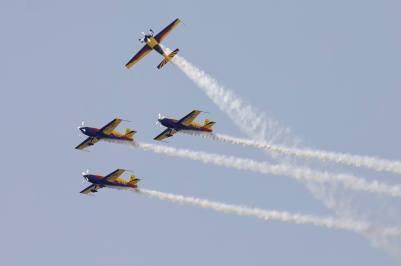The Hawks of Romania