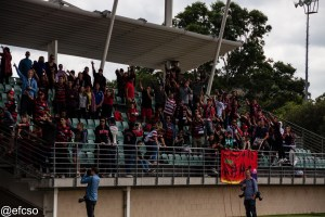 Wanderers fans at training. Photo by @efcso
