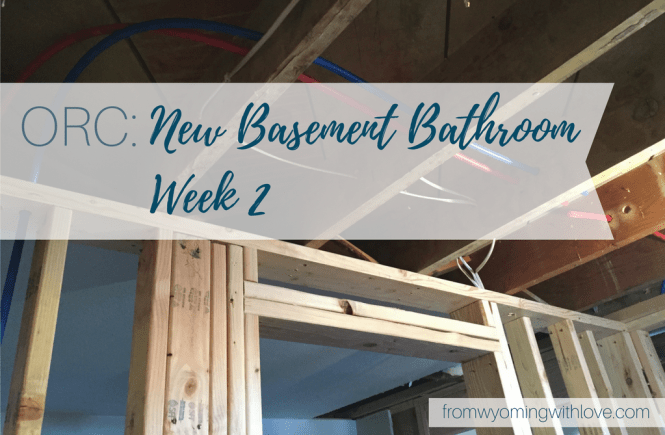 orc-new-basement-bathroom-week-2