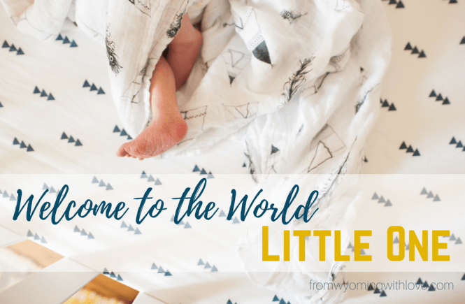 Welcome to the World Henry James Kimberly + Scott Photography