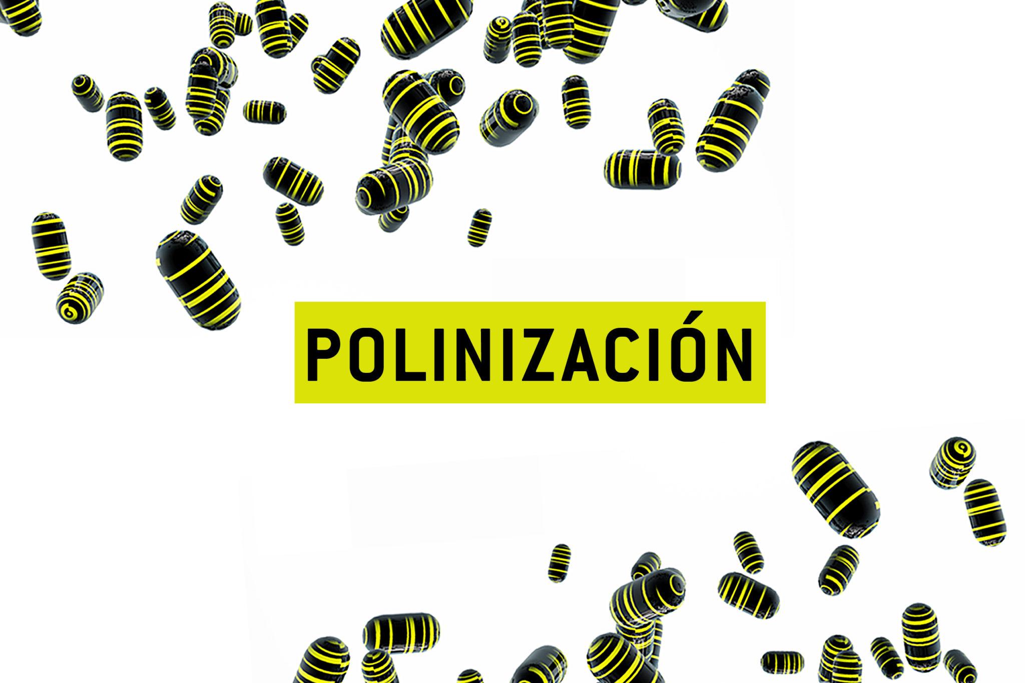 1 Polinizacion 2
