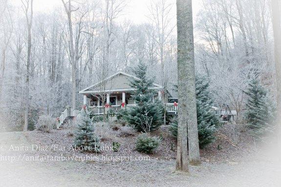 Podcast 15 Anitas Country Christmas Home Vintage