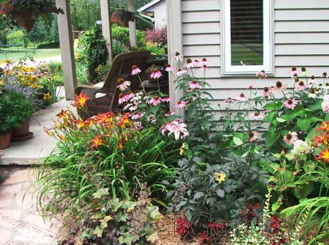 Zone 5 Perennials Perennial Garden Ideas Ohio Wildflowers