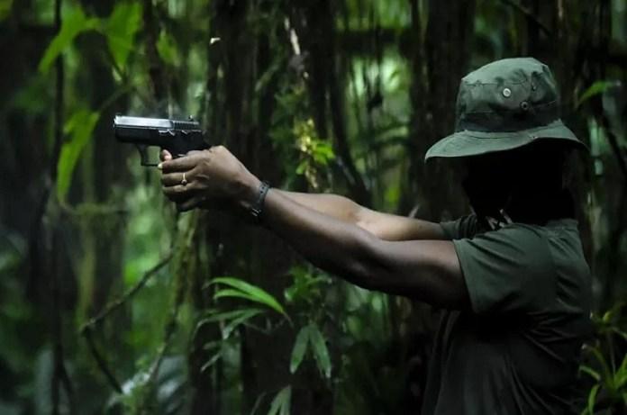 guerrilleros Venezuela