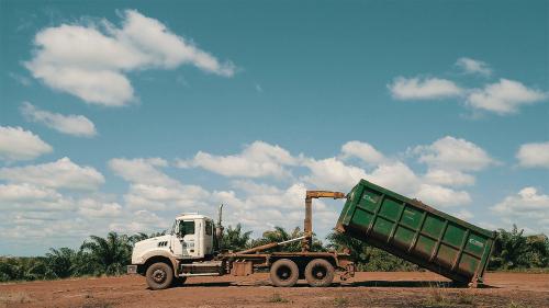 Palm truck