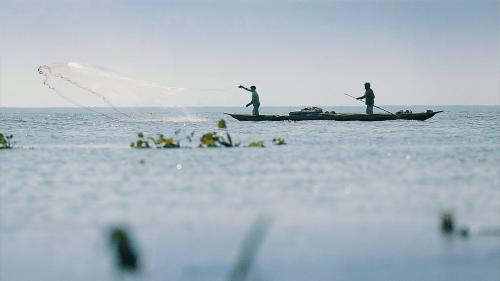 Fishing in Ciénaga Grande de Santa Marta