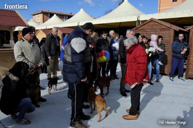 Bendedizione-Animali-Sant'Antonio-Abate-al-Mako-foto-Massimo-Renzi-16