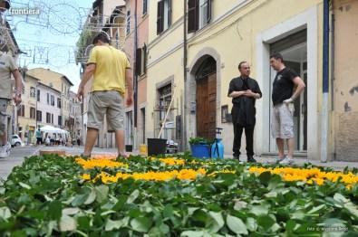 Giugno-antoniano-infiorate-2016-foto-Massimo-Renzi-17