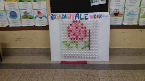 Rosa digitale week 11